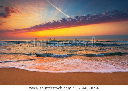 Stock photo: florida beach scene
