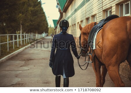 young woman walking on a white horse at the ranch stock photo © geribody