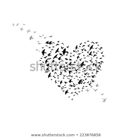 bird with heart, vector Stock photo © beaubelle