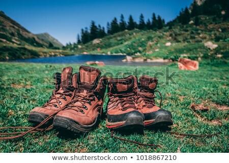 yürüyüş · bot · dağ · manzara · görmek - stok fotoğraf © suegresham