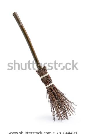 Velho cabo de vassoura ilustração isolado vetor formato Foto stock © orensila