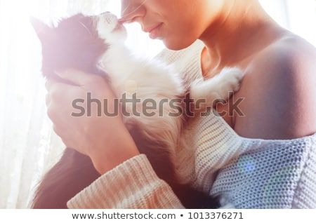 Cat licking nose Stock photo © phakimata