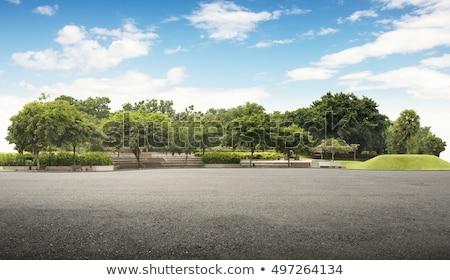 weg · kant · bomen · lege · groep - stockfoto © olandsfokus