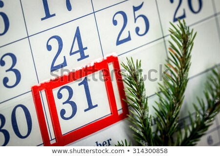 ściany kalendarza oddziału wystroić liści zimą Zdjęcia stock © Valeriy