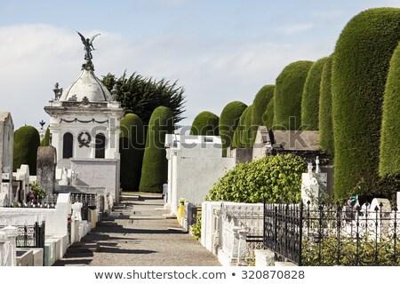 Mezarlığın Şili mezarlık ağaç taş barış Stok fotoğraf © benkrut