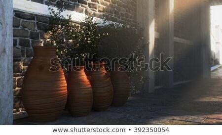 Ancient Street With Shadows Pitchers And Plants Stok fotoğraf © denisgo