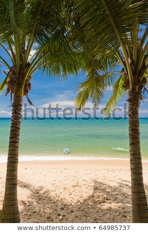 Stockfoto: Zand · strand · palm · sluiten · Vietnam · hemel