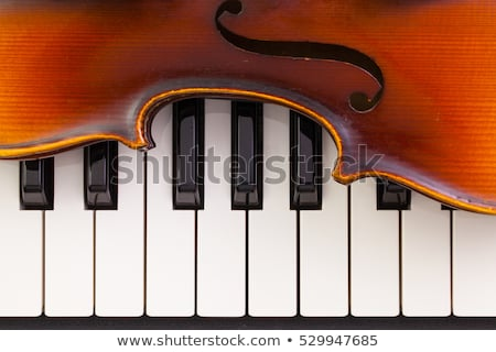 Piano toetsenbord oude viool detail muziek Stockfoto © CaptureLight