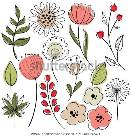 dibujado · a · mano · patrón · de · flores · negro · blanco · patrón · vector - foto stock © aleishaknight