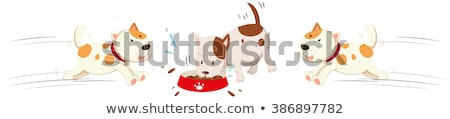 Dogs eating and running around Stock photo © bluering