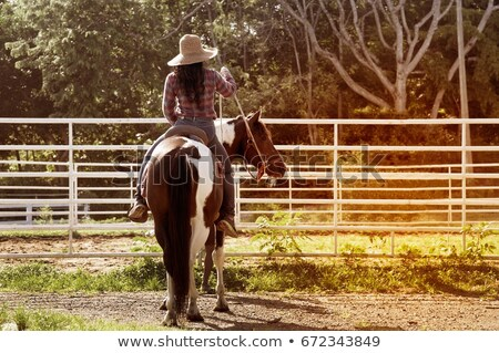 Cheerful woman cowgirl enjoying riding horse in village Stock photo © deandrobot