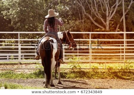 cavalo · menina · chapéu · de · cowboy · jovem · ao · ar · livre · sensual - foto stock © deandrobot