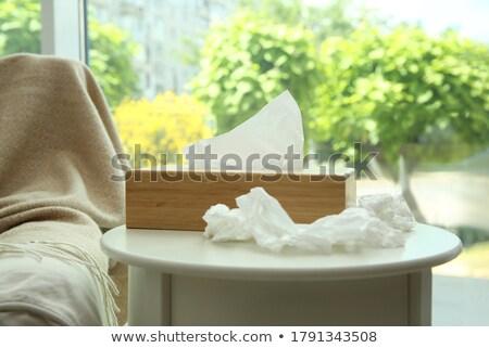 White wooden towel holders Stock photo © bezikus