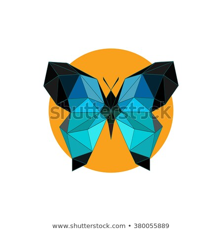 banner · oro · farfalle · frame · decorato · gioielli - foto d'archivio © blackmoon979