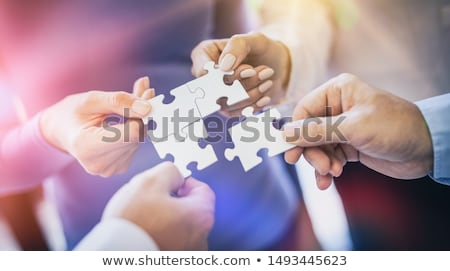 Business Alliance and Cooperation Stock photo © Lightsource