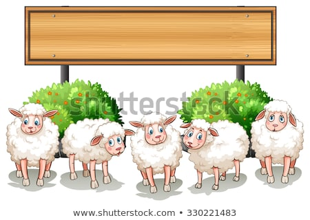 Wooden frame with sheeps in the farm Stock photo © bluering
