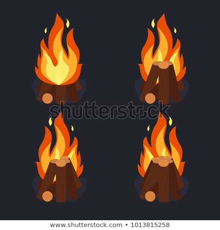 Bonfire - camping, burning woodpile, campfire or fireplace. Vector Stock photo © Andrei_