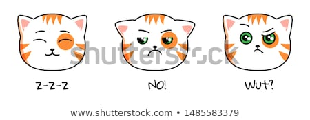 Angry grumpy cat emoji face Stock photo © ikopylov