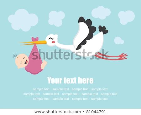 stork baby on pink background stock photo © bluering