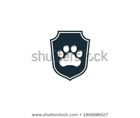 Pet care service, pet shop logo, health and life, cat design, vector illustration. Stock photo © ikopylov