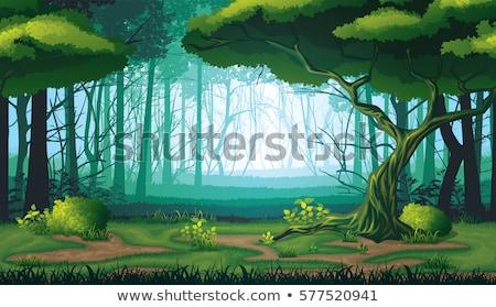 Foto d'archivio: Gioco · modello · foresta · scena · illustrazione · albero