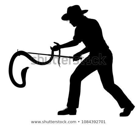 Snake catcher silhouette Stock photo © Tawng