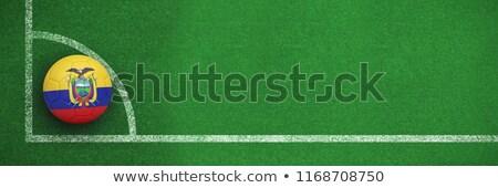 Football in ecuador colours against soccer field plan  Stock photo © wavebreak_media