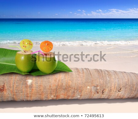 Summer refreshing cocktail tropical island with palm tree Stock photo © orensila