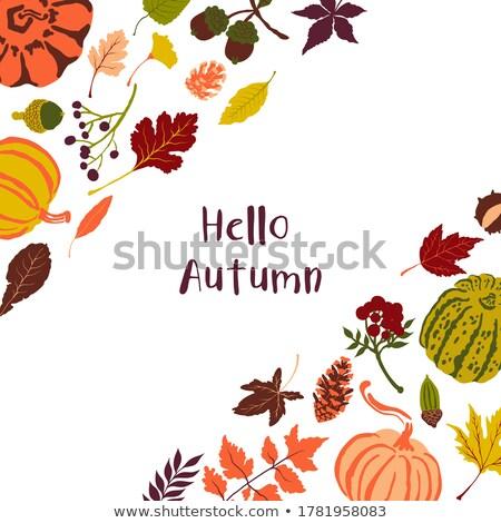 Hola otono saludo simple secar follaje Foto stock © svvell