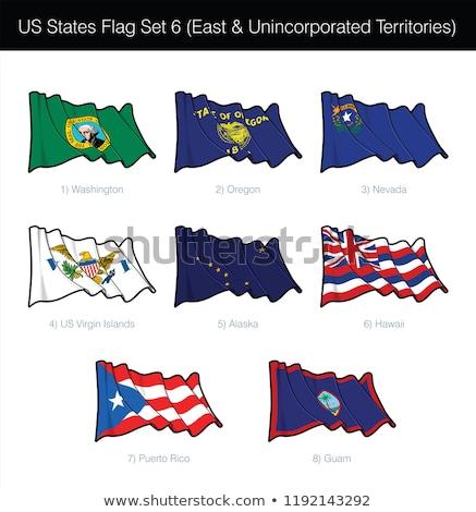 US States Flag Set - East and Free Associated  Stock photo © nazlisart