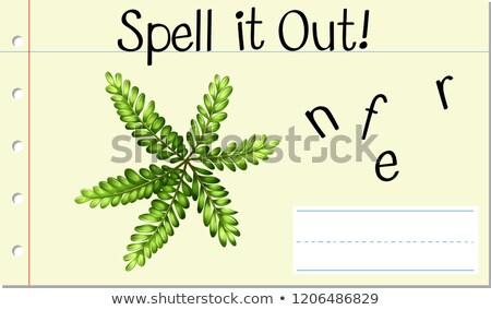 Anglais mot fougère illustration art Photo stock © bluering