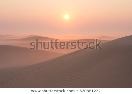 Winter chilly morning in road with sunrise Stock photo © X-etra