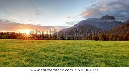 Stock fotó: Hegyek · tájkép · naplemente · ösztönző · tél · néz