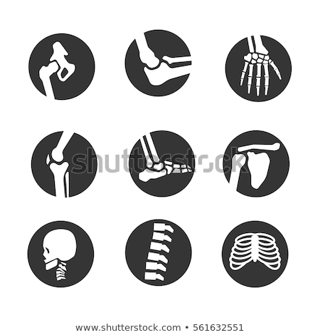 Raio x osso vetor ícone projeto símbolo Foto stock © blaskorizov