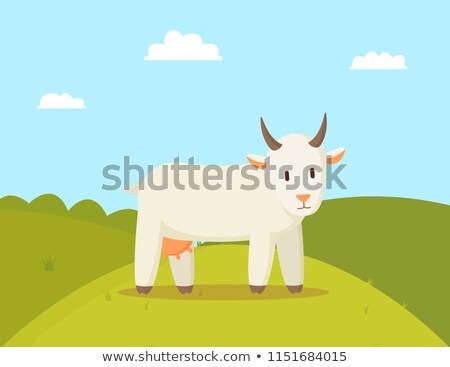 Goat Stroll on Glade Colorful Vector Illustration Stock photo © robuart
