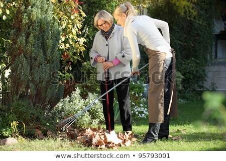 старший женщину газона грабли рабочих саду Сток-фото © dolgachov