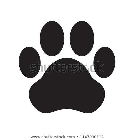 Köpek logo vektör simge ikon sanat klibi Stok fotoğraf © blaskorizov