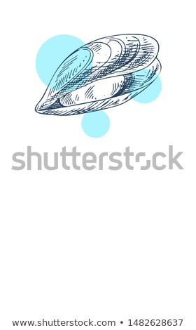 mussel marine creature hand drawn poster with text stock photo © robuart