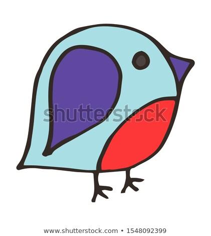 Drafting animal for pet bird Stock photo © colematt