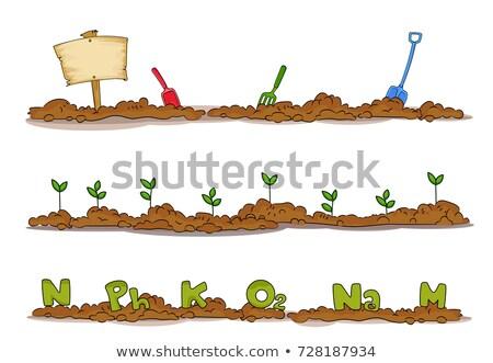 Bahçe toprak elemanları örnek kürek Stok fotoğraf © lenm