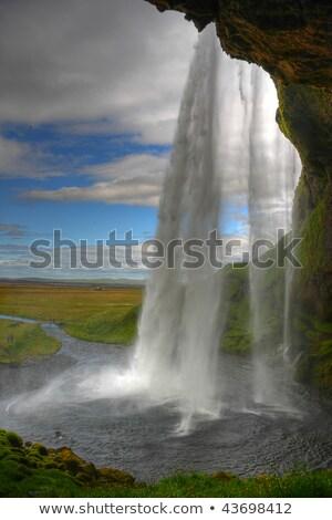 Touristiques cascade Islande bleu veste Photo stock © Kotenko
