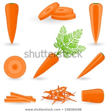 vector set of carrot stock photo © olllikeballoon