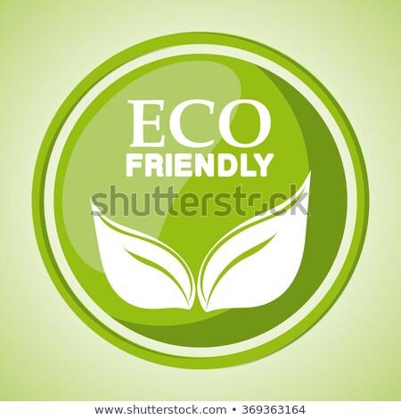 alternative eco friendly leaf stamp stock photo © szsz
