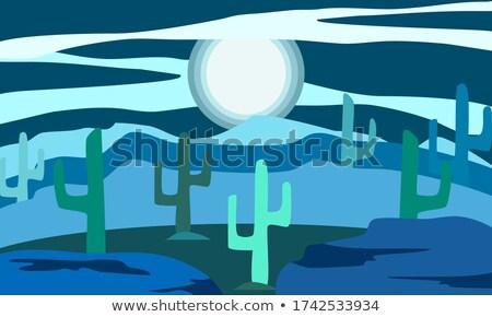 Desert Cactus Nighttime Landscape Nature Illustration Stock photo © artisticco