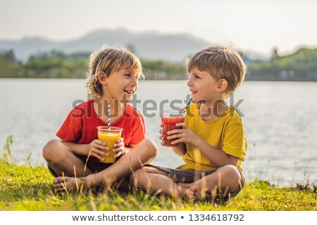 two boys drink healthy smoothies against the backdrop of palm trees mango and watermelon smoothies stock photo © galitskaya