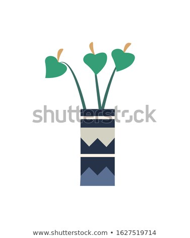 House Plant in Pot With Zig Zag Ornaments Isolated Stock photo © robuart