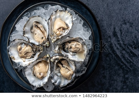 Fresh Oysters Seafood Stock photo © Lightsource