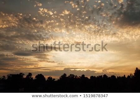 Mooie zonsondergang Oekraïne fantasie hemel textuur Stockfoto © ruslanshramko