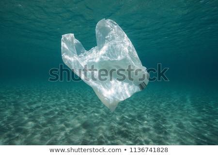 Wody zanieczyszczenia plastikowe torby ocean ilustracja Zdjęcia stock © bluering