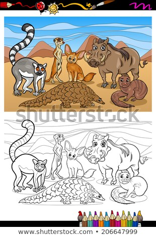 warthog wild animal cartoon coloring book page Stock photo © izakowski